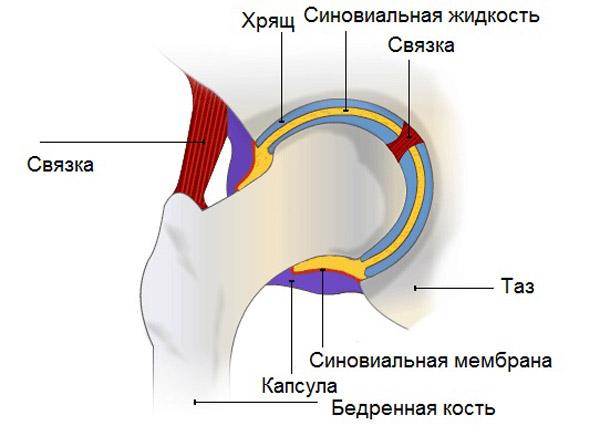 реактивный выпот в полости сустава и супрапателлярной сумке