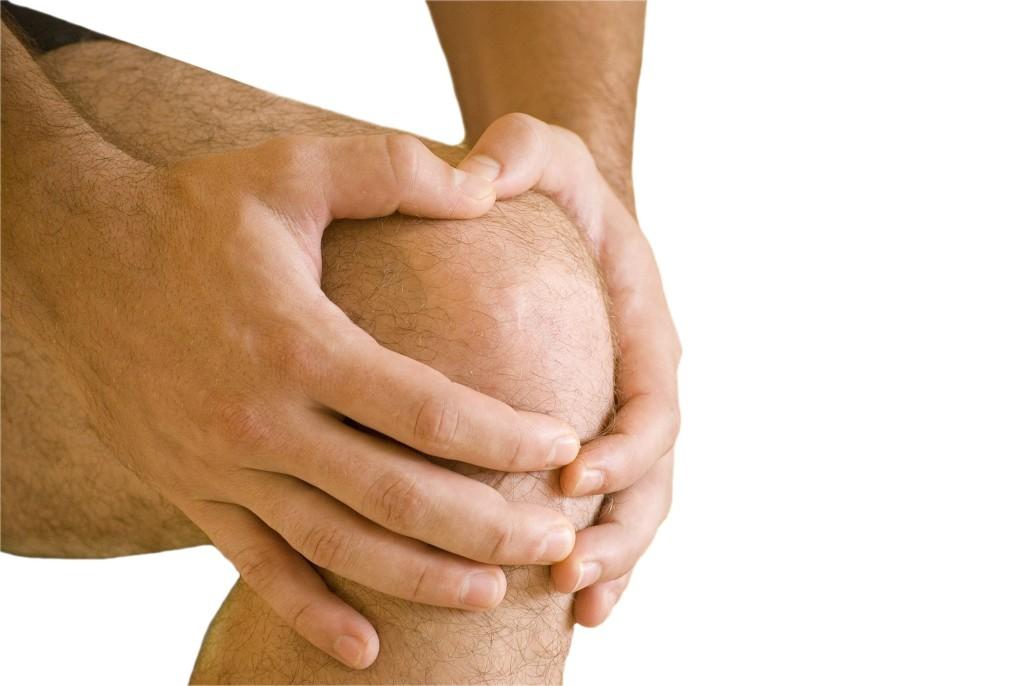 дегенеративные изменения передней крестообразной связки коленного сустава